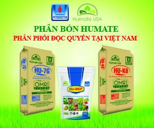 cty-phan-bon-humate