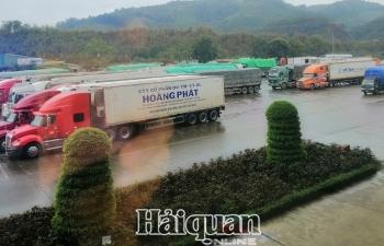Tồn gần 1.200 xe, hàng xuất khẩu sang Trung Quốc ngày càng khó