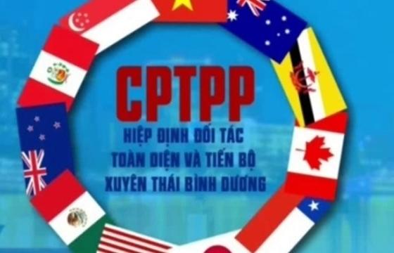 Hướng dẫn thực hiện đấu thầu mua sắm theo Hiệp định CPTTP